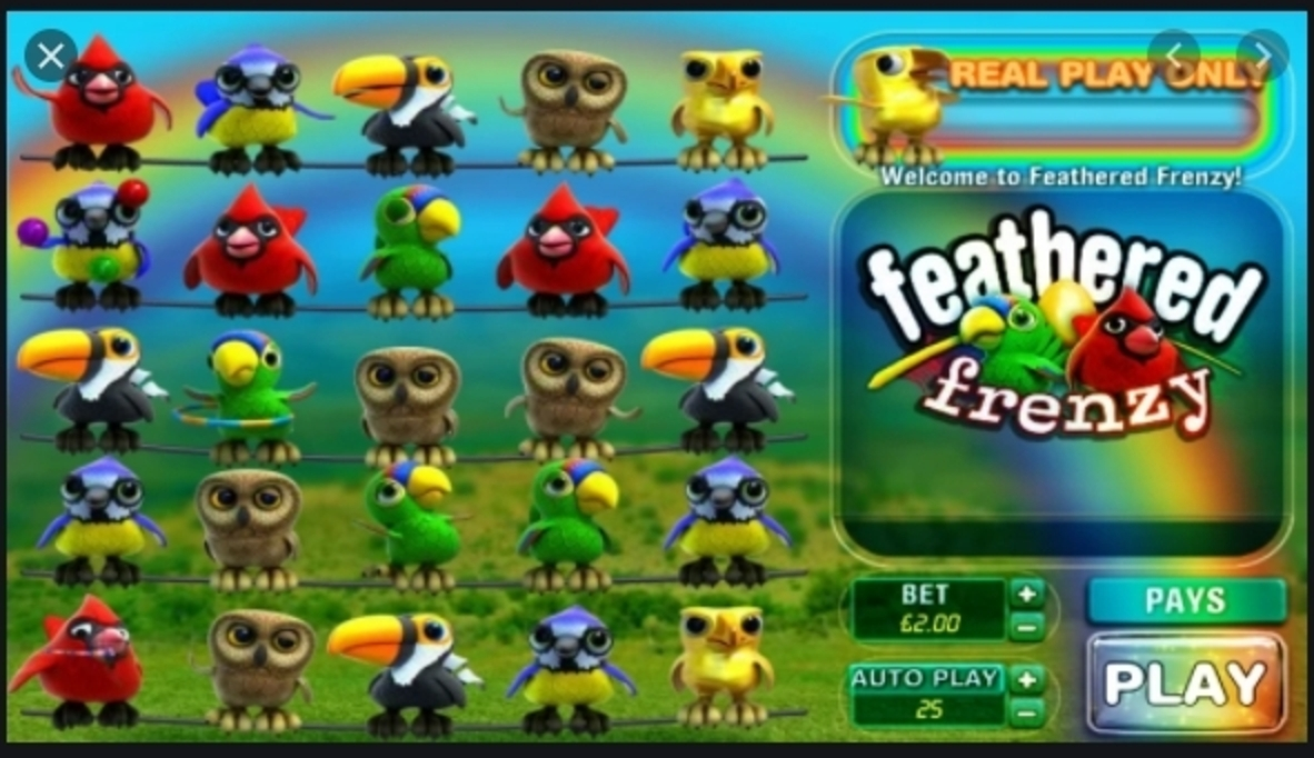 The Feathered Frenzy Online Slot Demo Game by Big Time Gaming