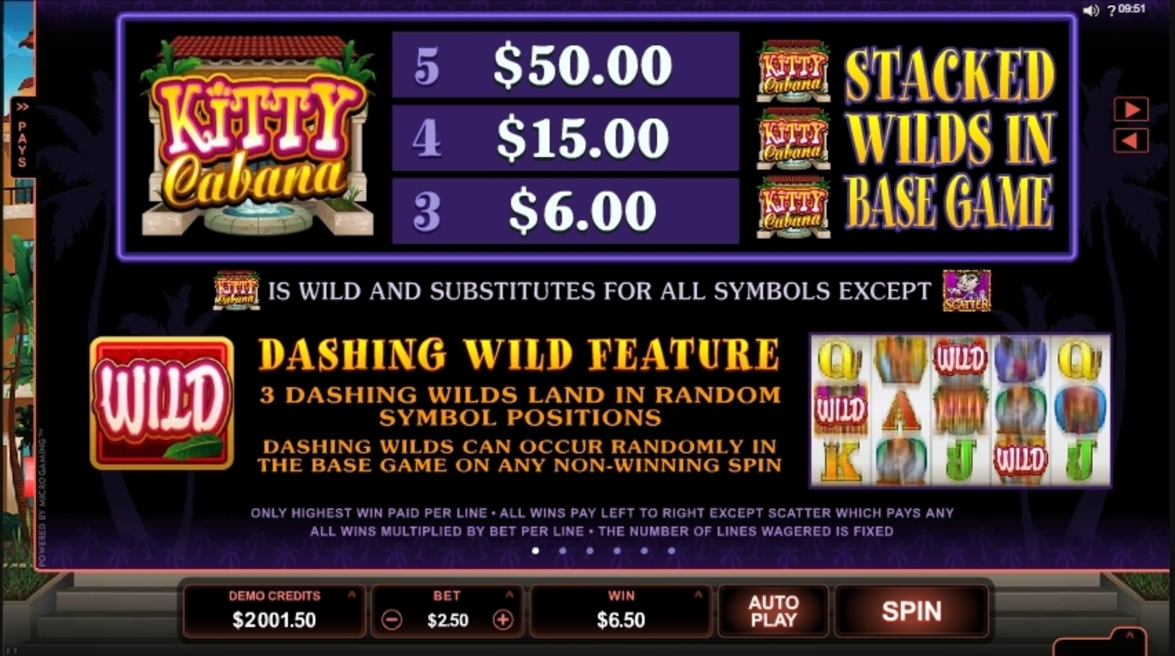 Info of Kitty Cabana Slot Game by Microgaming