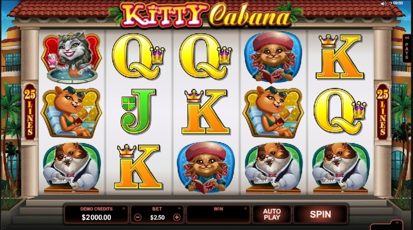 Reels in Kitty Cabana Slot Game by Microgaming