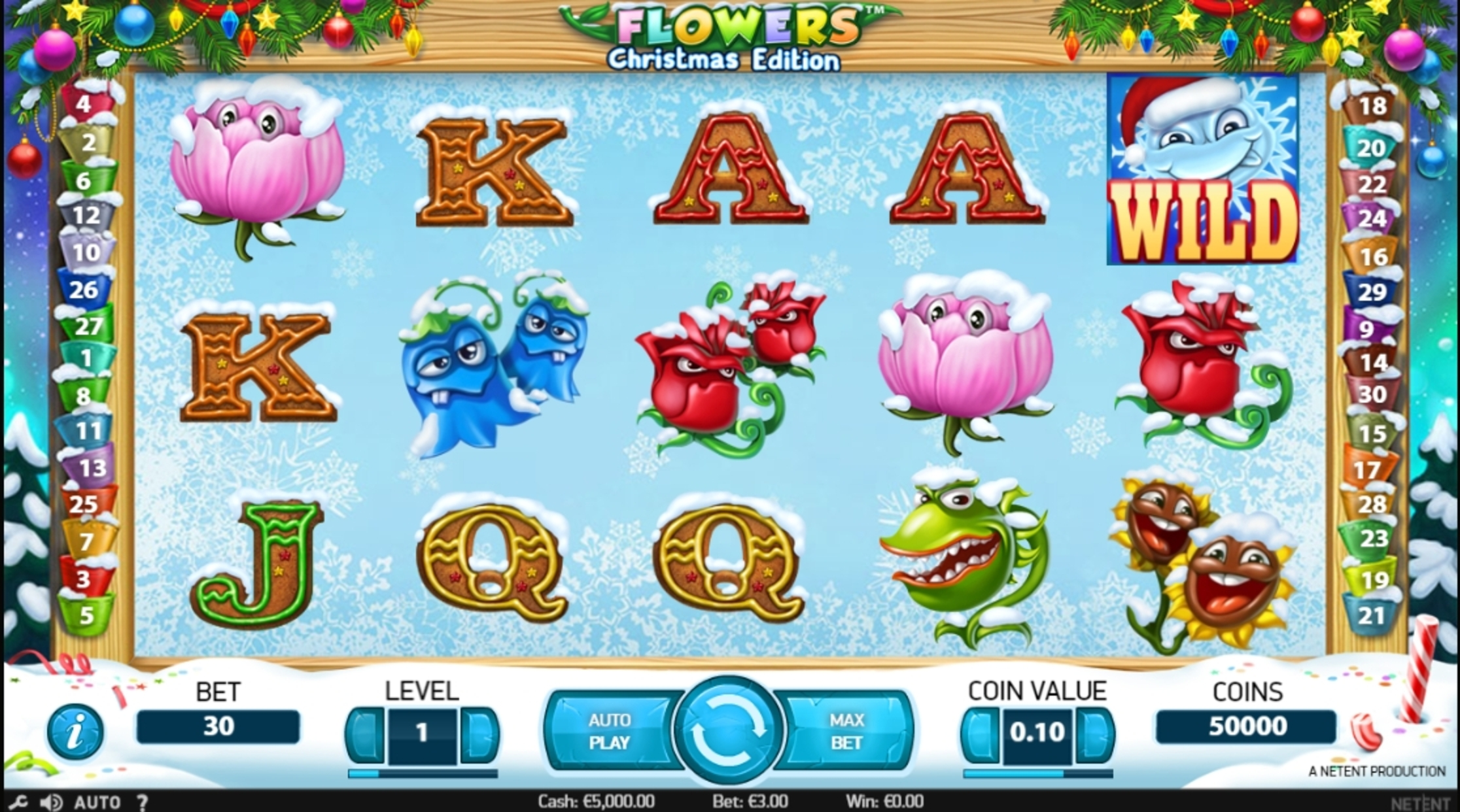 Reels in Flowers Christmas Edition Slot Game by NetEnt