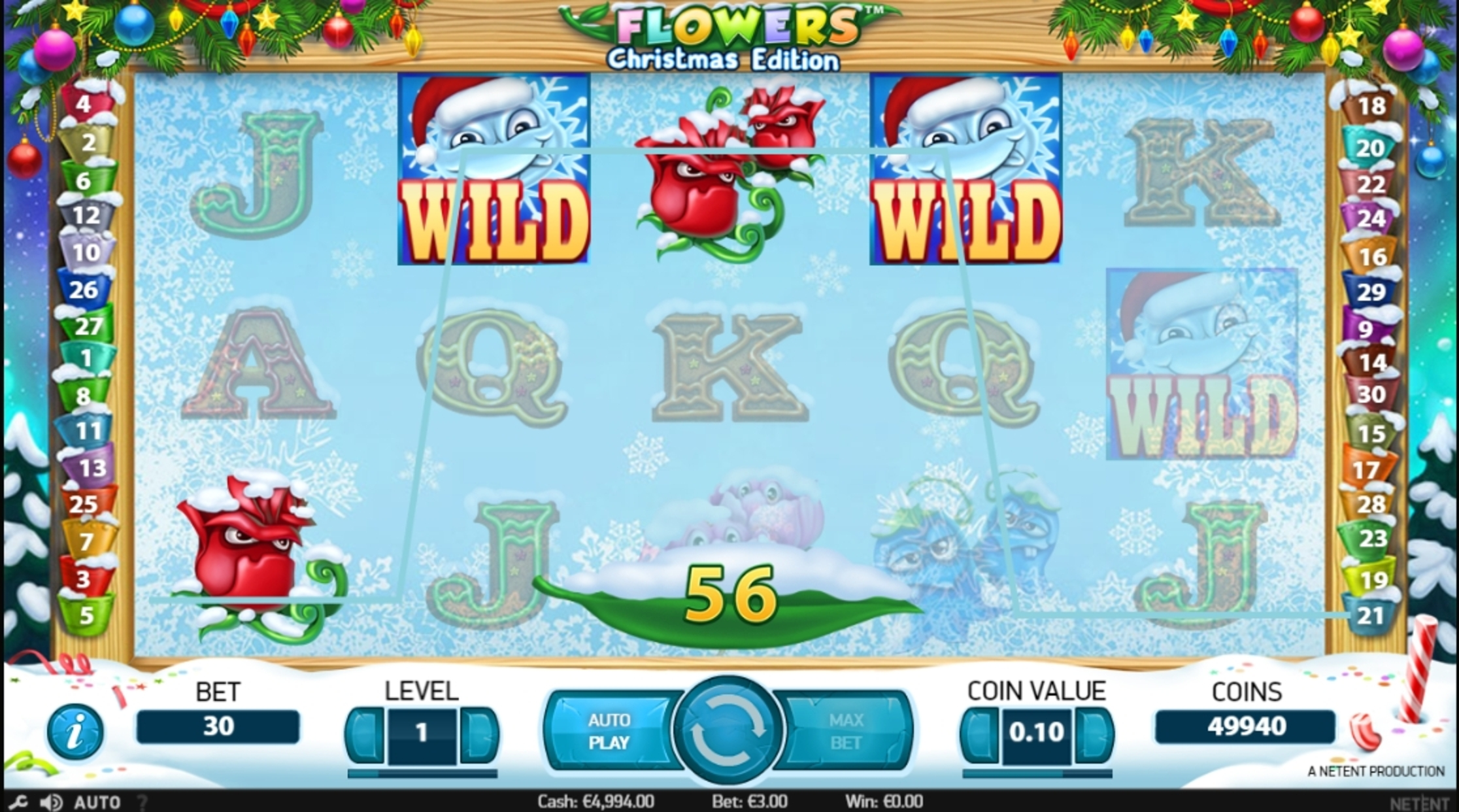 Win Money in Flowers Christmas Edition Free Slot Game by NetEnt