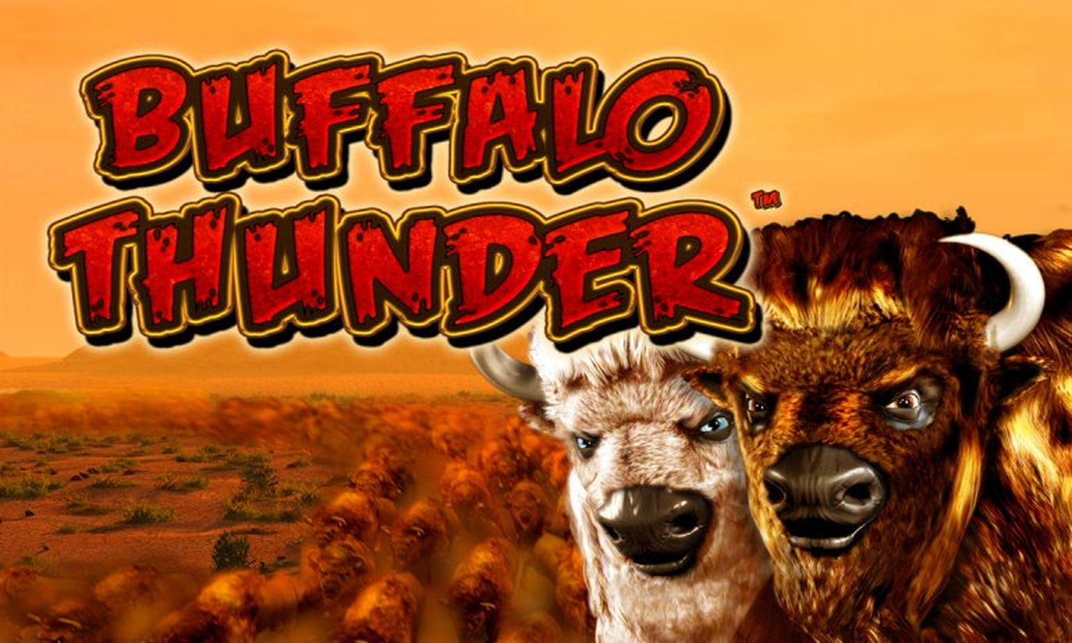 The Buffalo Thunder Deluxe Online Slot Demo Game by Novomatic