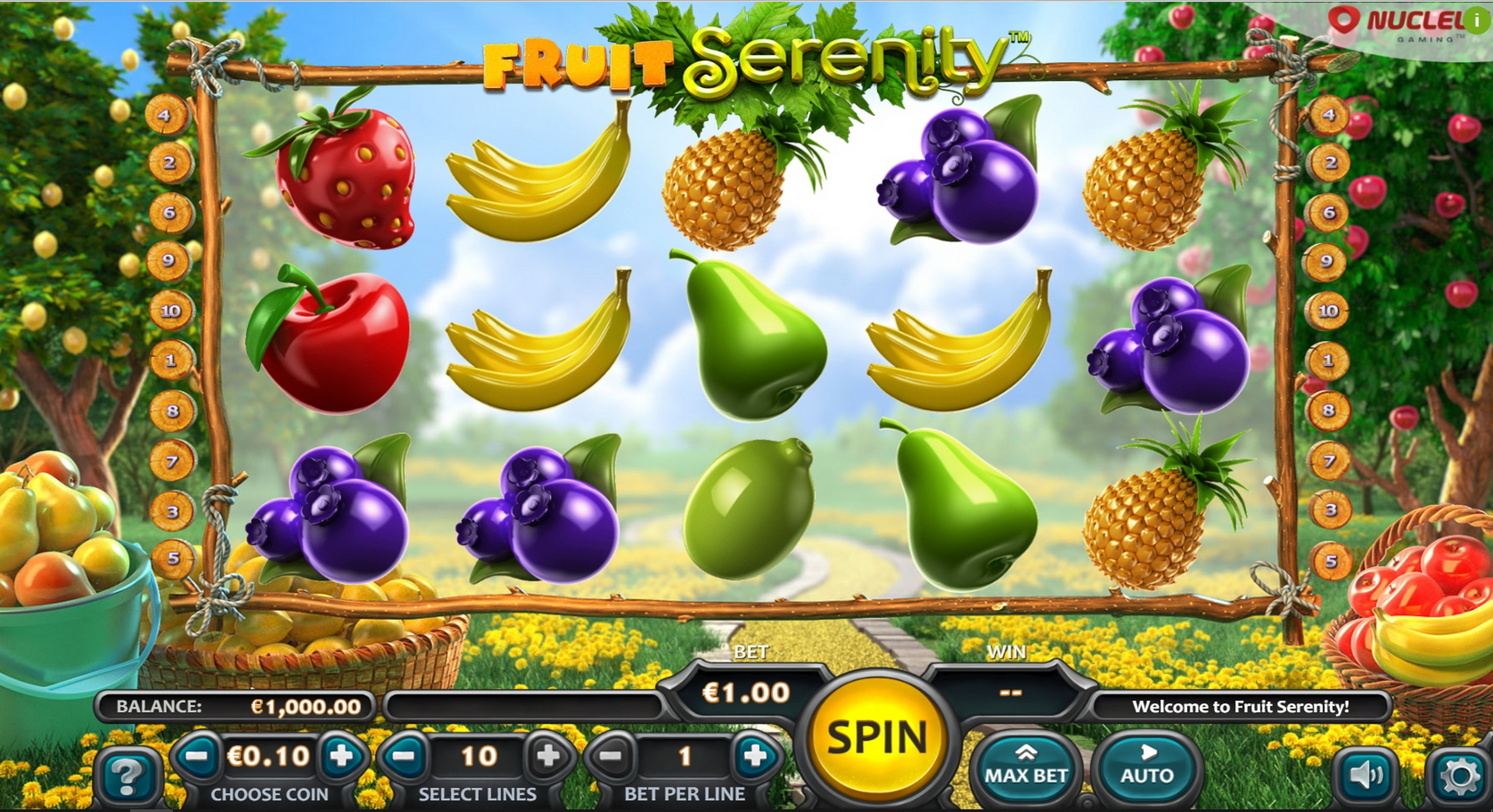 Reels in Fruit Serenity Slot Game by Nucleus Gaming