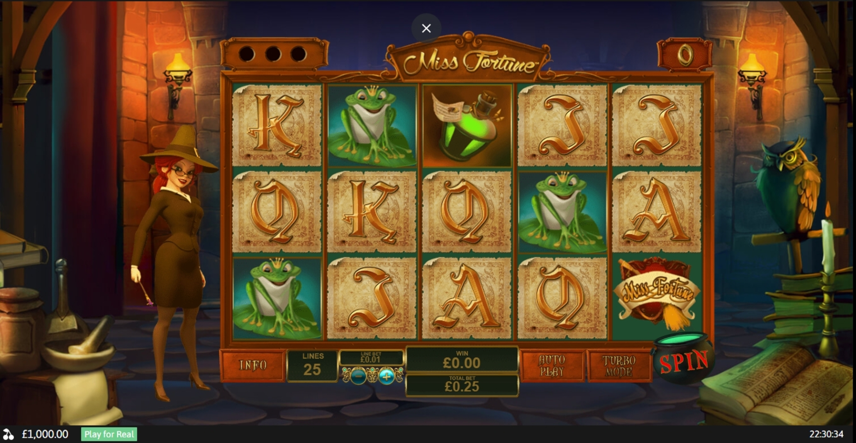 Reels in Miss Fortune Slot Game by Playtech